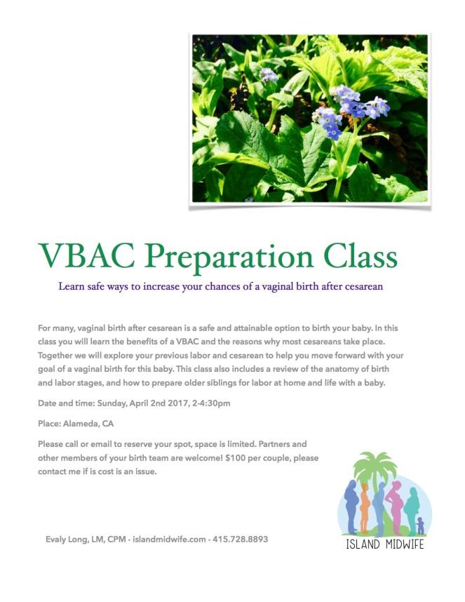 VBAC class flyer jpeg