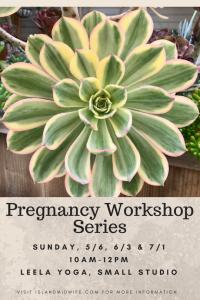 Copy of Pregnancy Workshop Series
